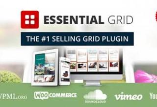 افزونه ساخت گرید Essential Grid برای وردپرس