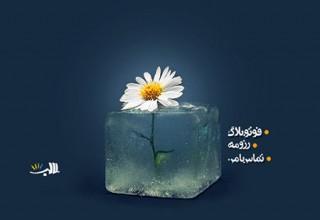 قالب تک صفحه شخصی گل یخی به صورت HTML
