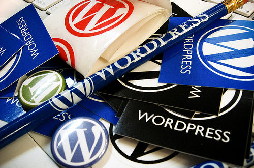 WordPress-guide-for-beginners-500x330