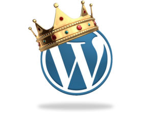 king-wordpress-300x223